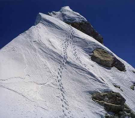 Footprints leading to the Manaslu Summit - Los Ochomiles: Karakorum e Himalaya book